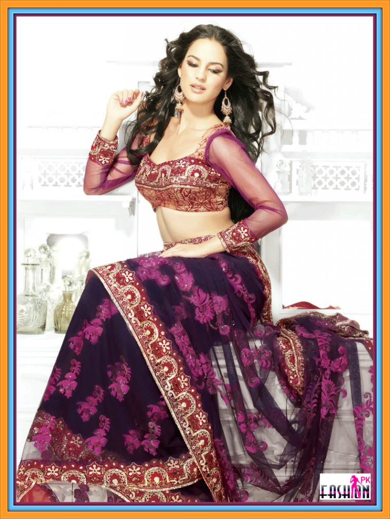 Indian Saree's And Bridal Saree's collection 2014