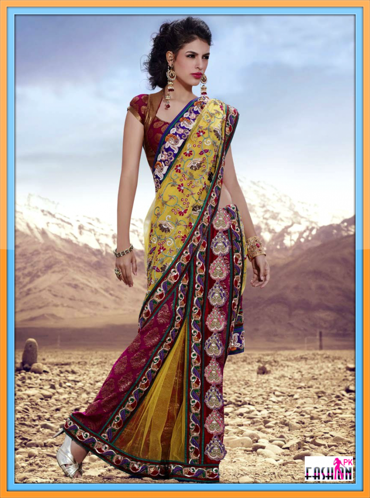 Latest Saree Variety 2014